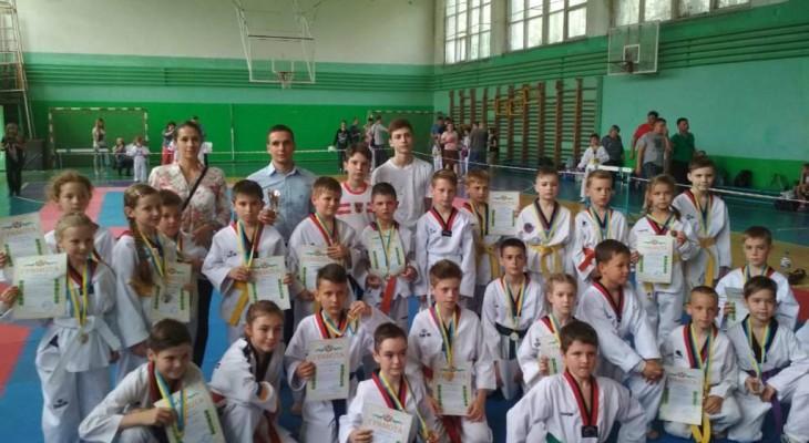 В Новомосковске прошли открытые областные соревнования по Тхэквондо