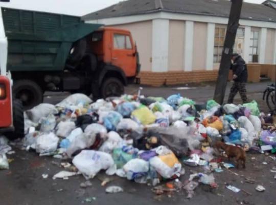 Жители Новомосковска своими же руками при полной бездеятельности городских властей устраивают стихийные свалки