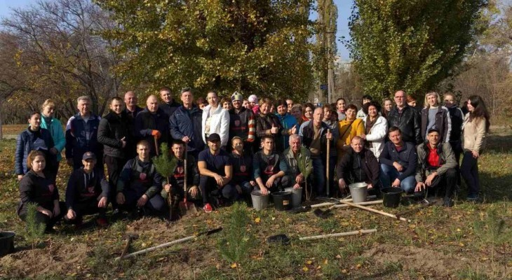 Мэрия Новомосковска провела озеленение города.
