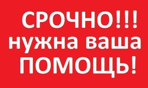 В Новомосковске 6 ноября произошла большая трагедия для семьи Бадерко.