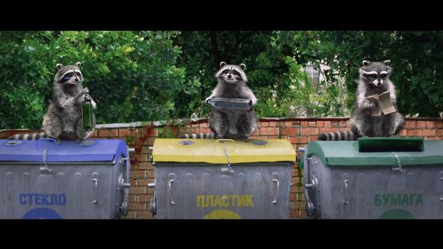 Белорусы сняли  милую социальную рекламу с енотиками о раздельном сборе мусора.