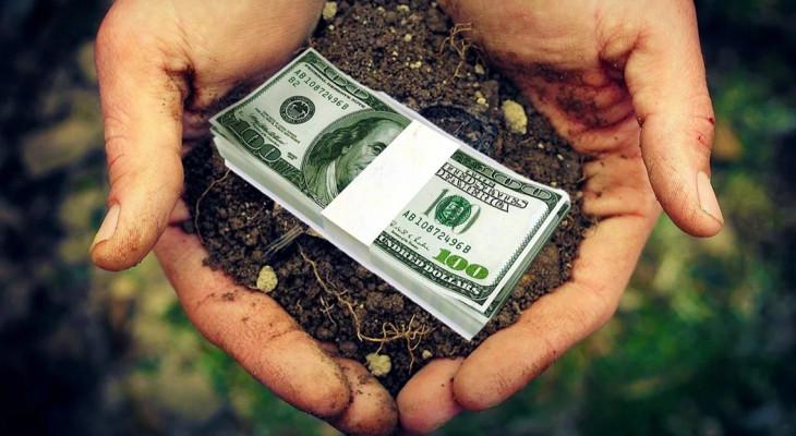 Верховная Рада приняла закон, которым позволила  иностранцам покупать земли в Украине